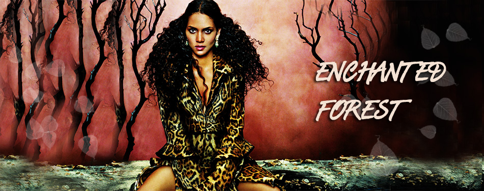 witchcraft header image 1
