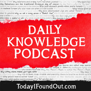 Daily Knowledge Podcast
