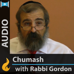 Daily Chumash with Rashi (Audio) - by Yehoshua B. Gordon