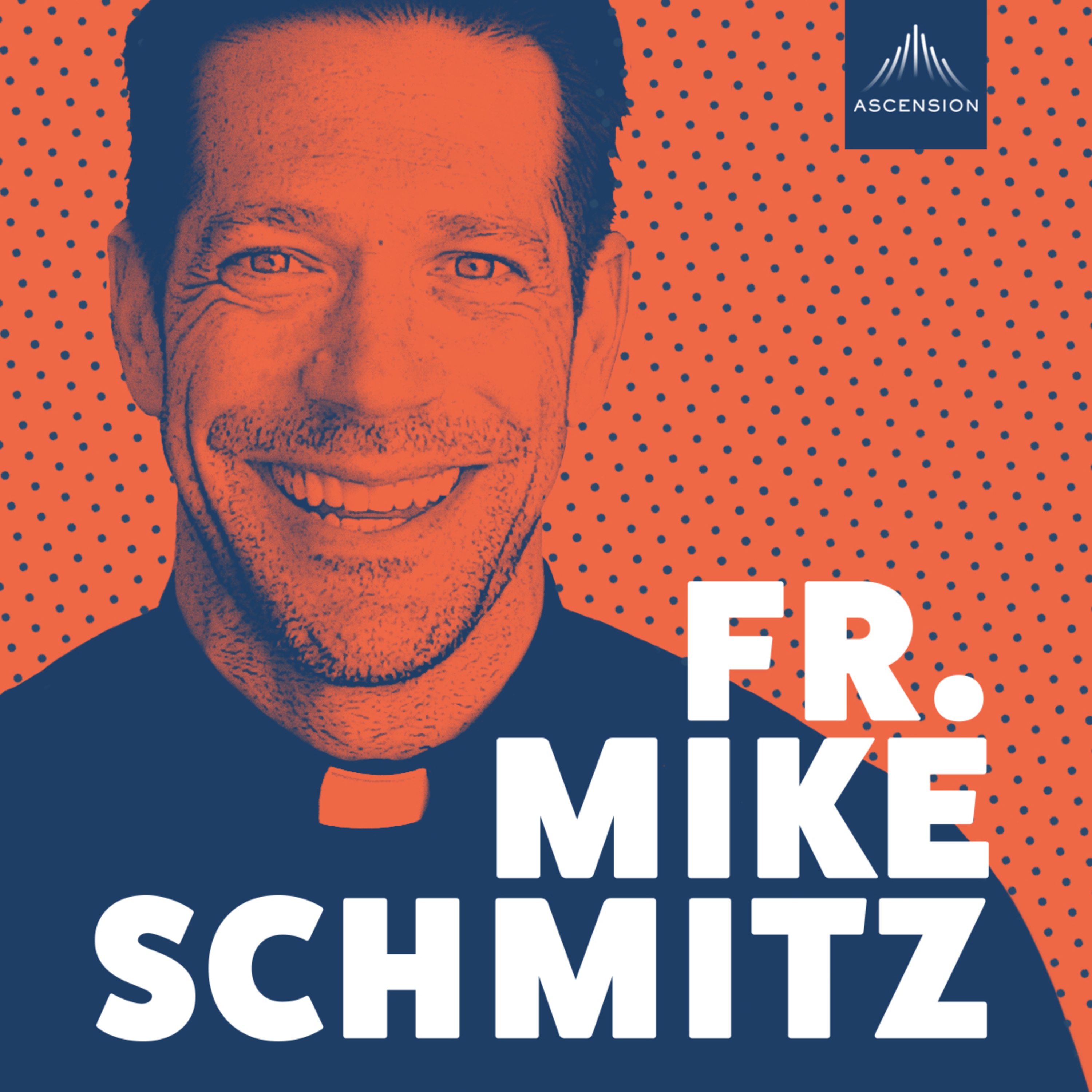 The Fr  Mike Schmitz Catholic Podcast | Free Listening on