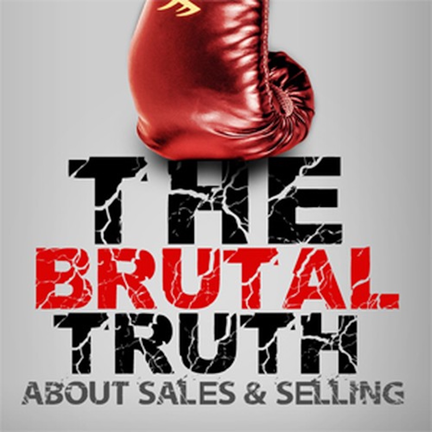 The Brutal Truth about B2B Sales & Selling - Business Hacker of B2B ENTERPRISE, SOCIAL & COLD CALLING