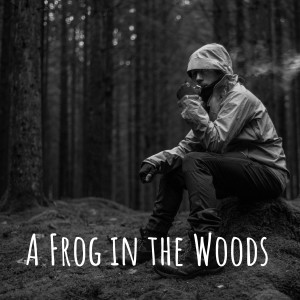 A Frog in the Woods
