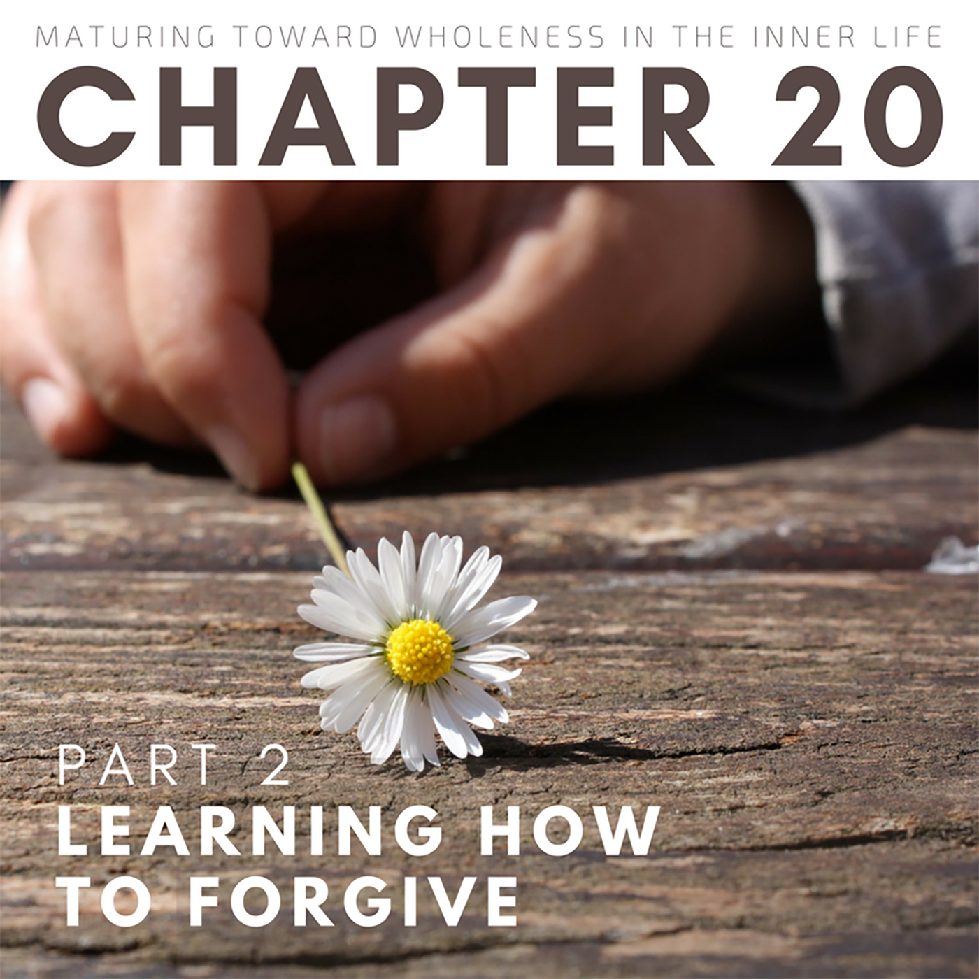 Learning How to Forgive (2 OF 2)