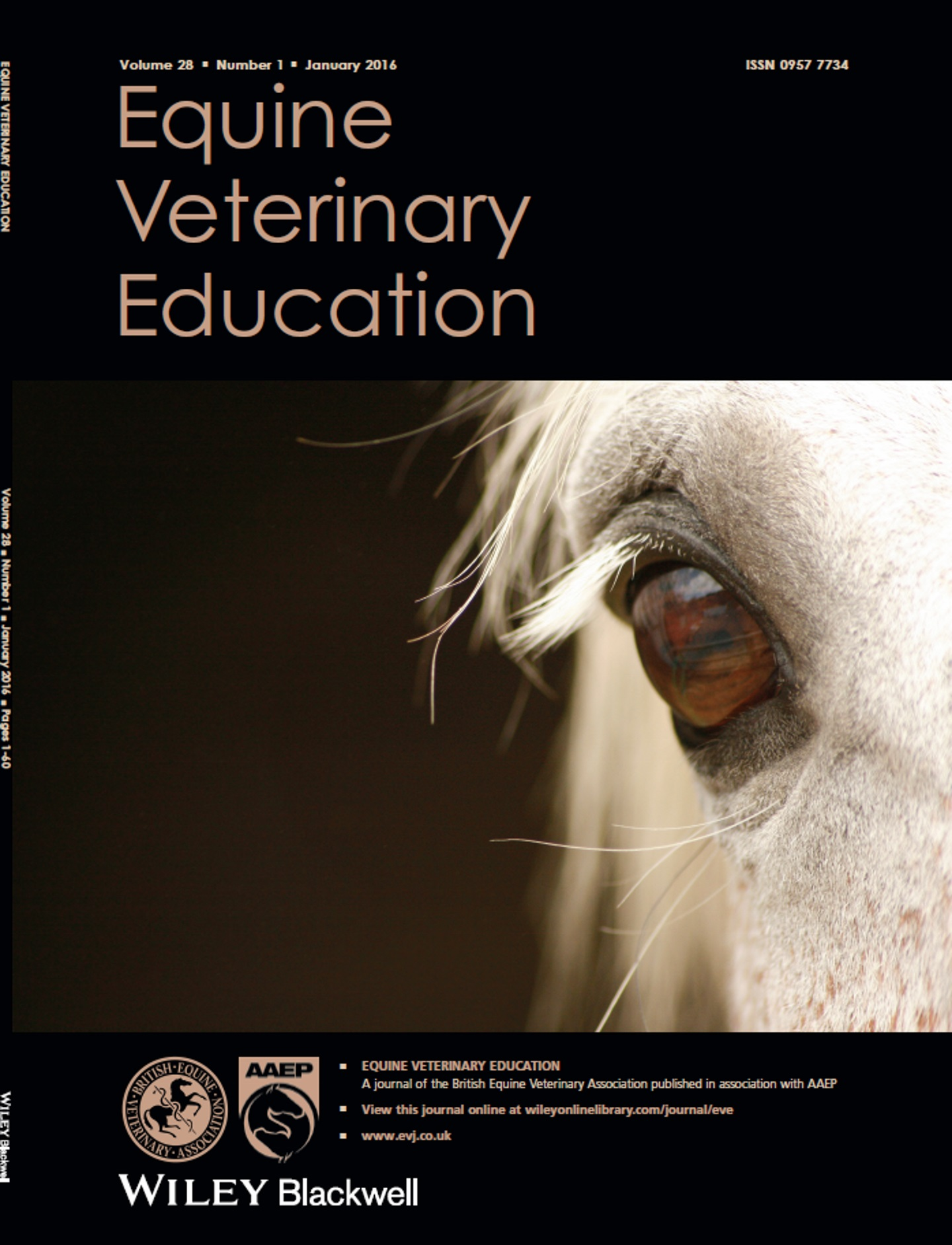 EVE Podcast, No 1, December 2015 - A review of research into second intention equine wound healing using manuka honey (A Bischofberger) & Quantitative assessment of gait parameters in horses (T Pfau)