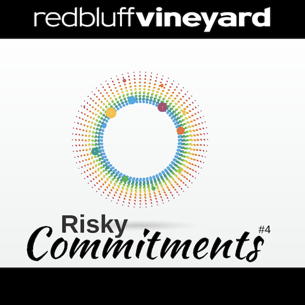 Risky Commitments: Failure