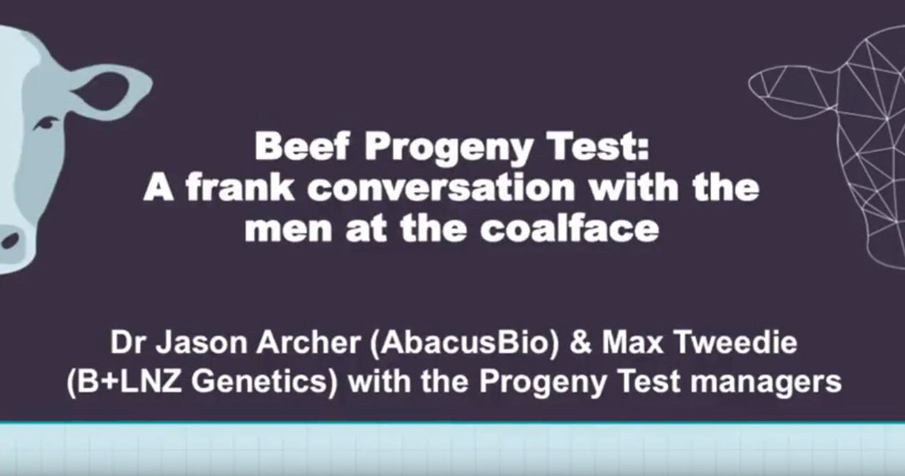 Beef Progeny Test: A frank conversation with the men at the coalface