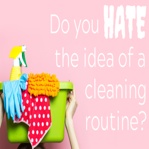 Do you hate the idea of a cleaning routine?