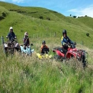 The question of quadbikes
