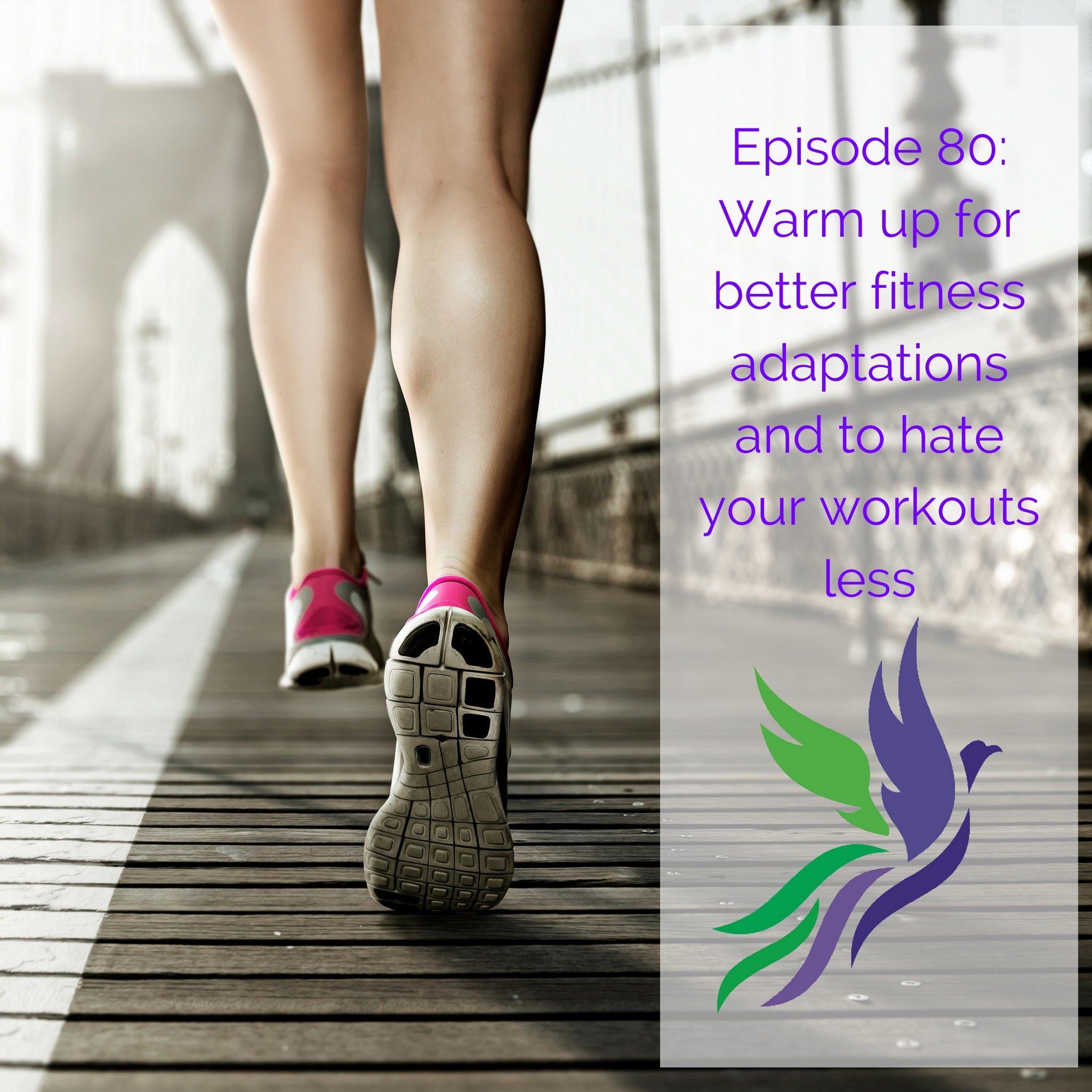 #80 Warm up for better fitness adaptations and to hate your workouts less