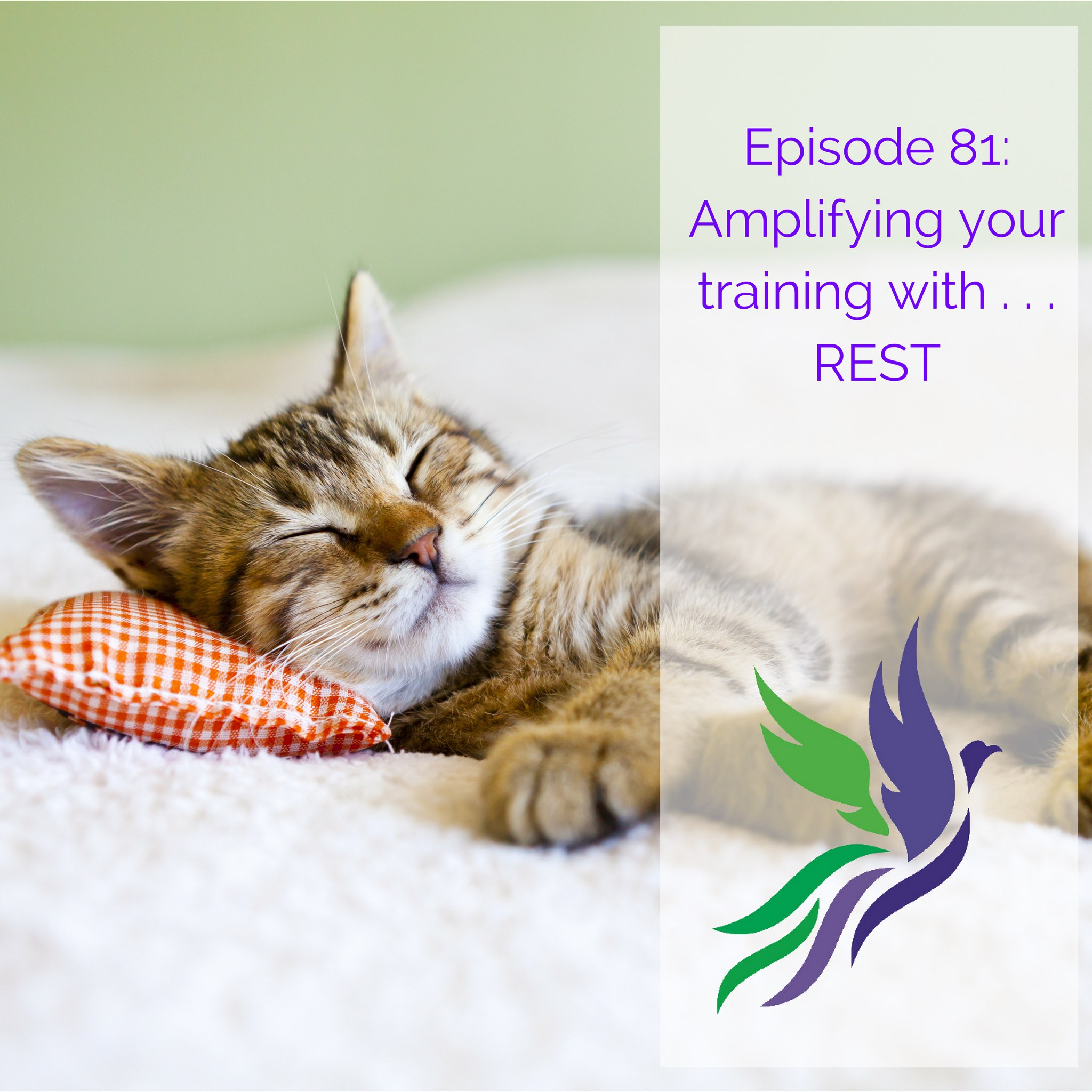 #81 Amplifying your training with . . . REST