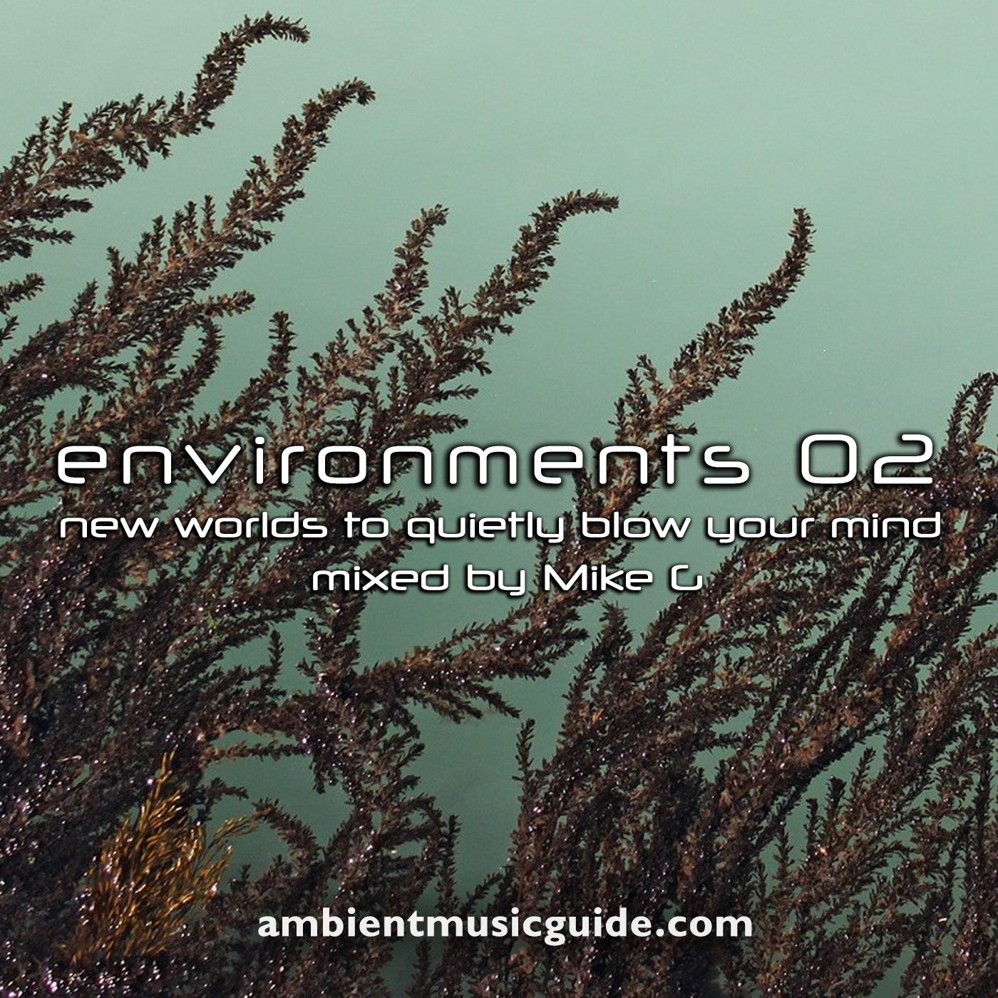 Environments 02 - new worlds to quietly blow your mind mixed by Mike G