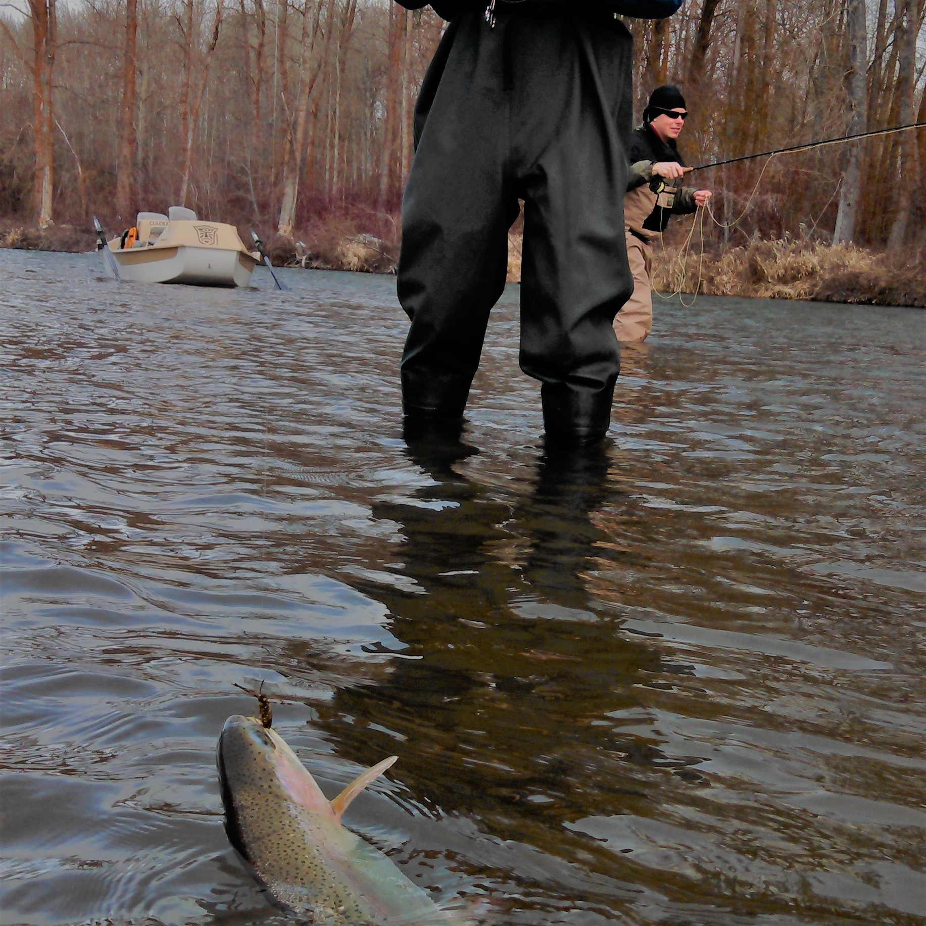 Episode 28 - Winter Strategies for Trout