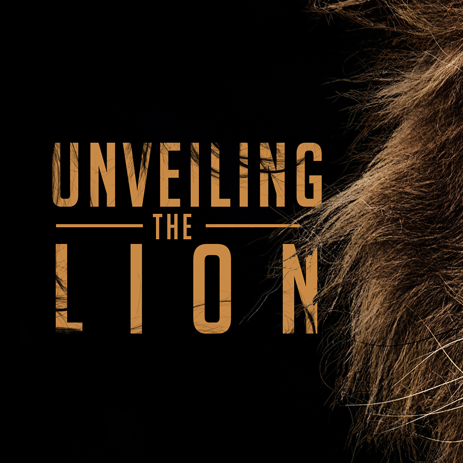 Unveiling the Lion