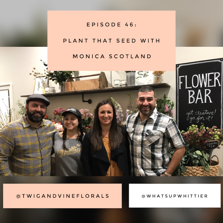 EPISODE 46: PLANT THAT SEED with Monica Scotland