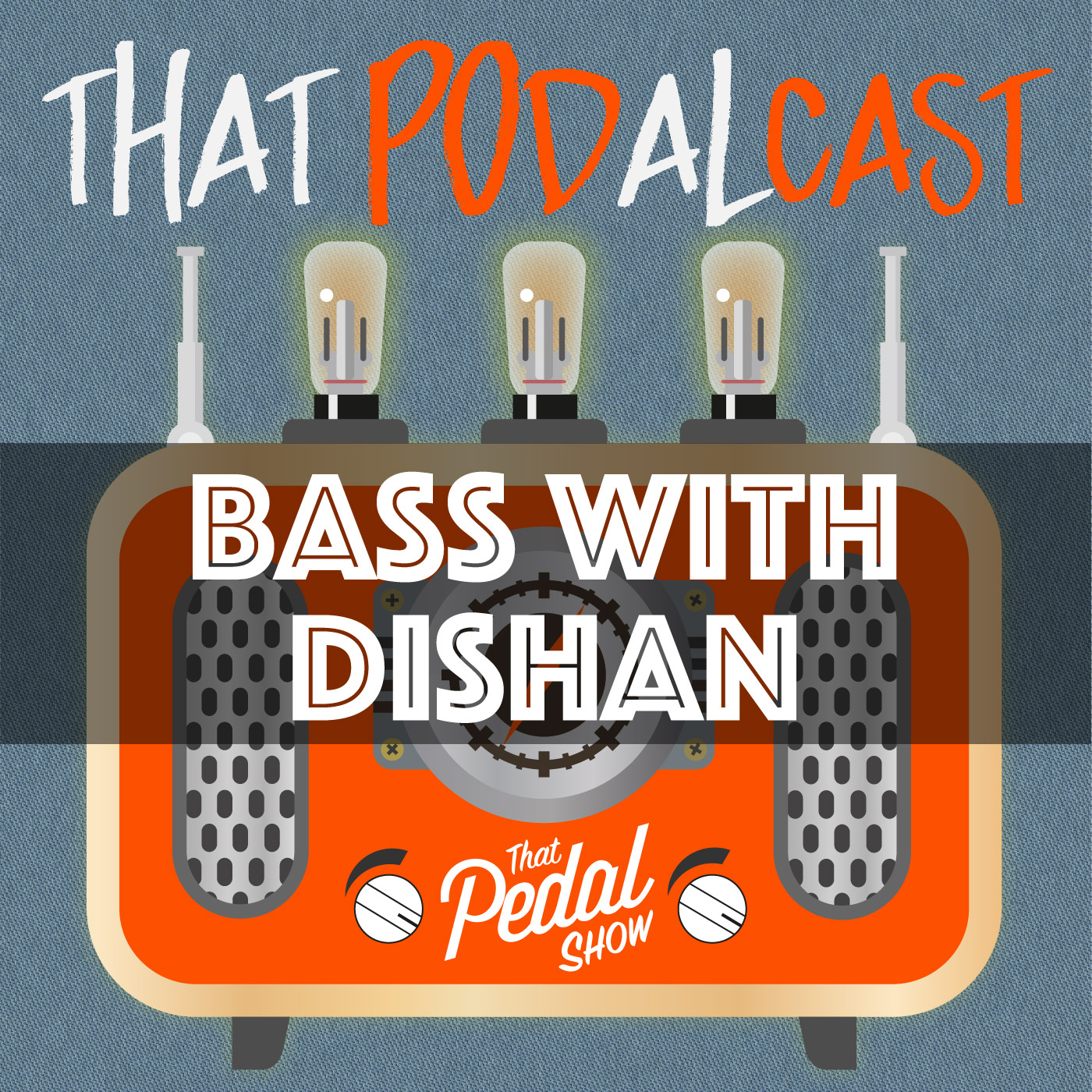 Bass Guitar FX Board & Chat With Dishan Abrahams