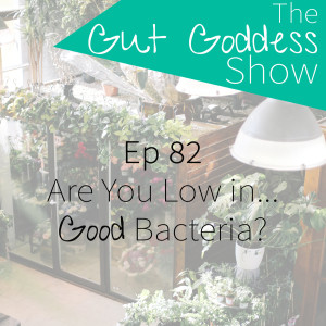 Ep 82: Are You Low In...Good Bacteria??