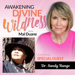 Meet Rev. Dr. Sandy Range, Therapeutic Coach, Shaman and Medicine Woman