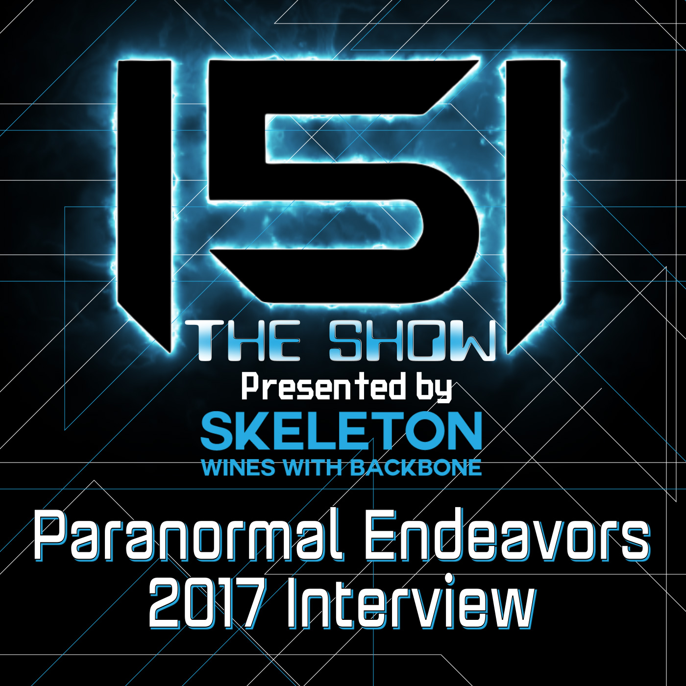 Paranormal Endeavors Interview 2017