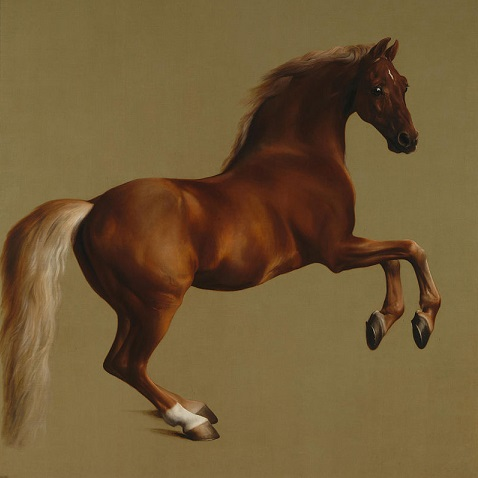 """""""Back in the Saddle Again"""": Horsemanship and the Liberal Arts with Lorine Sheehan"""