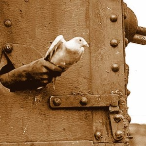 FOCUS ON: The Animals of WWI - Ep.#141