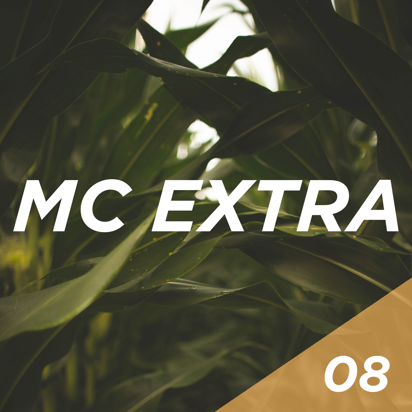 Extra 08 - World Class Silage Part 1