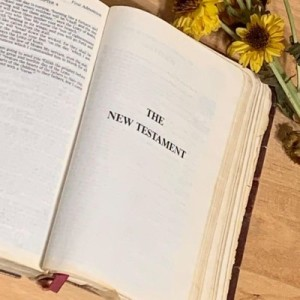 Roadmap to the Bible - New Testament Overview