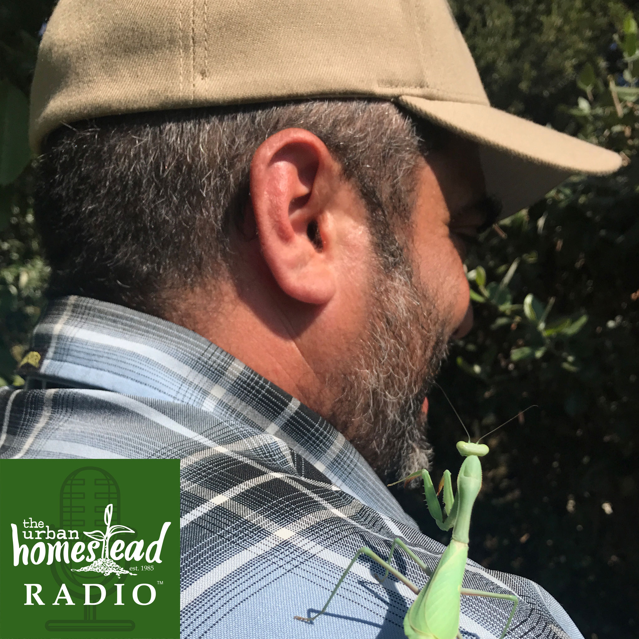 Urban Homestead Radio Episode 59: Justin Dervaes Interview 2018 Part 2