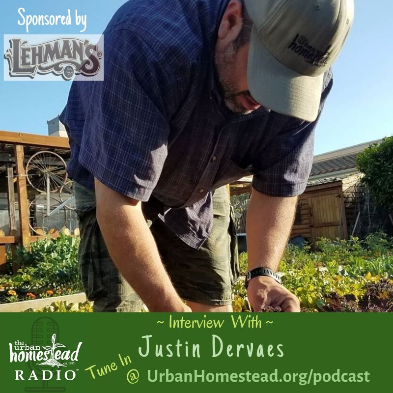 Urban Homestead Radio Episode 84: Fall Update with Justin Dervaes