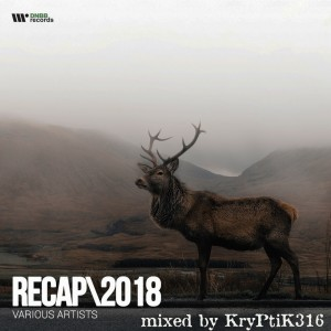 Archives - 1617 - 30th December 2018 (Part 4) DnB Releases Mixed by KryPtiK316