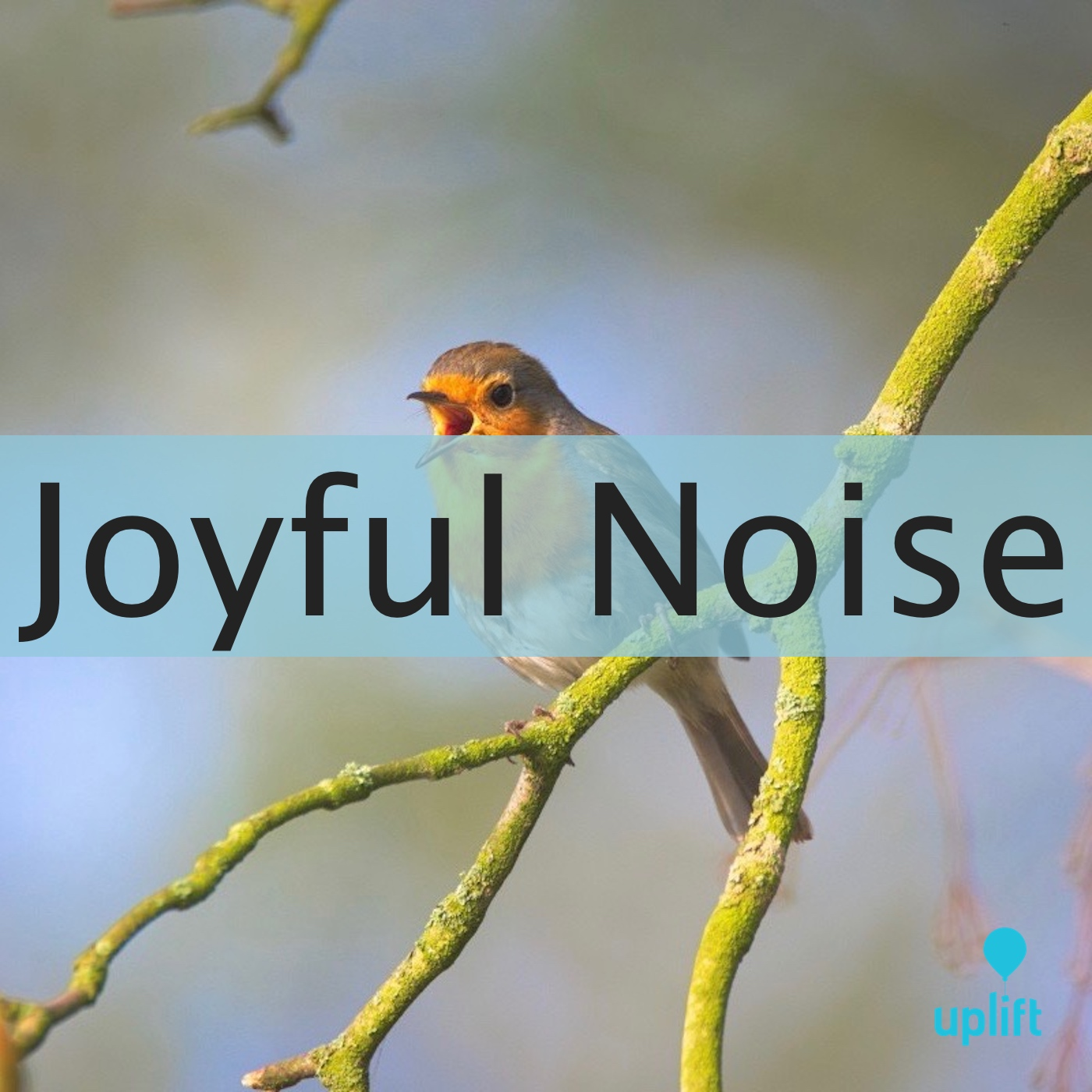 Episode 100: Joyful Noise