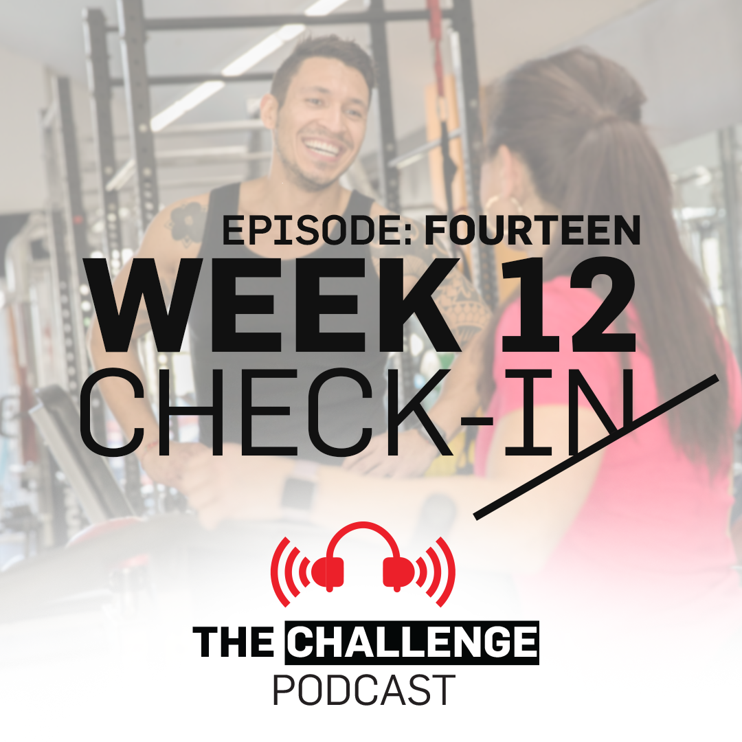 Week 12 Check-in - Dianne and Helen talk about all the do's and don't's with that final check in