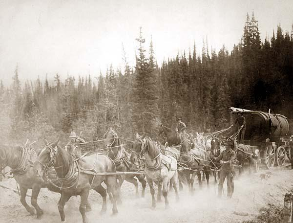Rattlesnake Stations and Stage Coach Barons: Mountain Home, ID