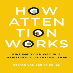 How Attention Works