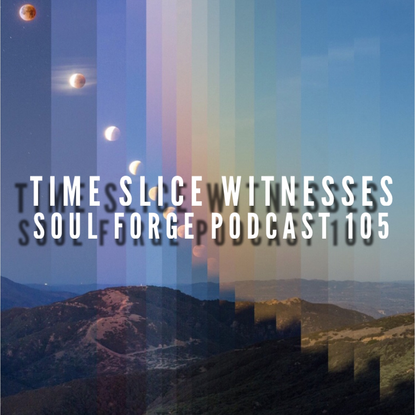 Time Slice Witnesses - 105