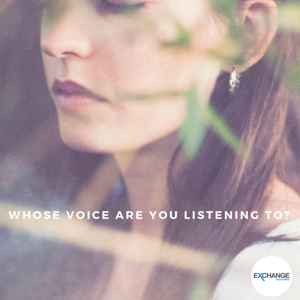 Whose voice are you listening to ?