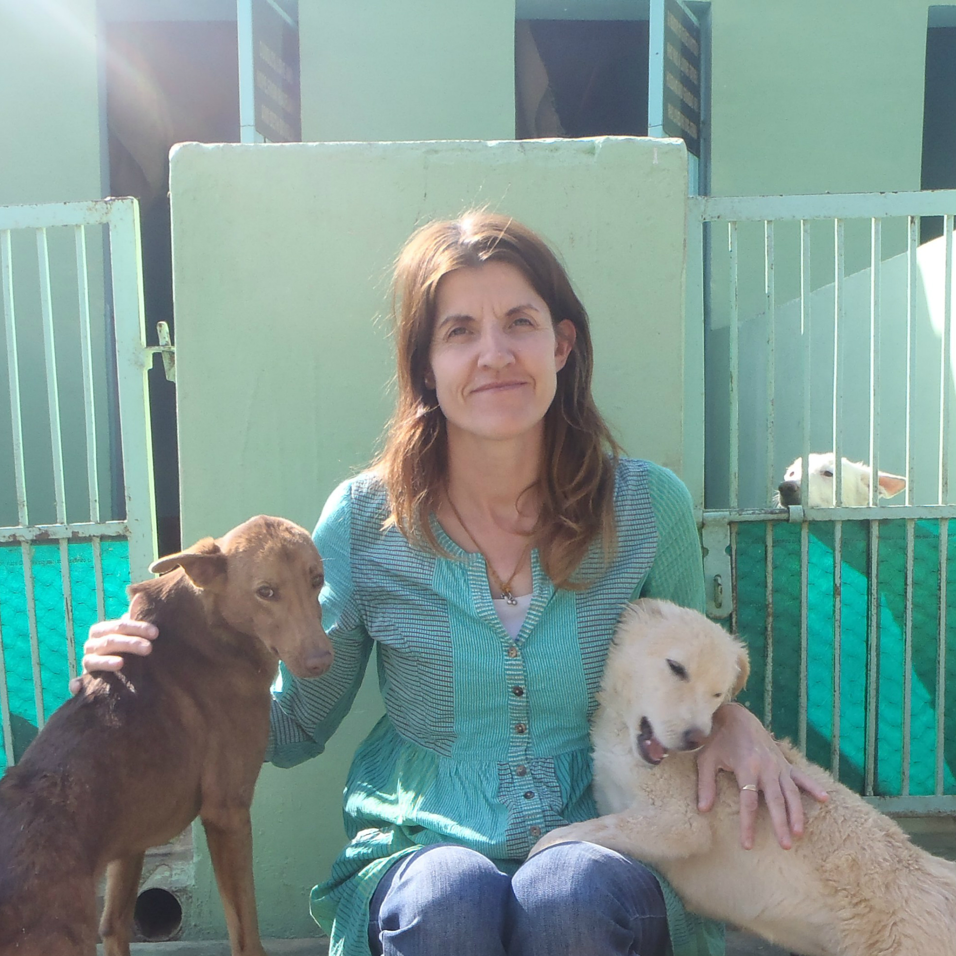 RCVS Awards - charity work in India with Rachel Wright