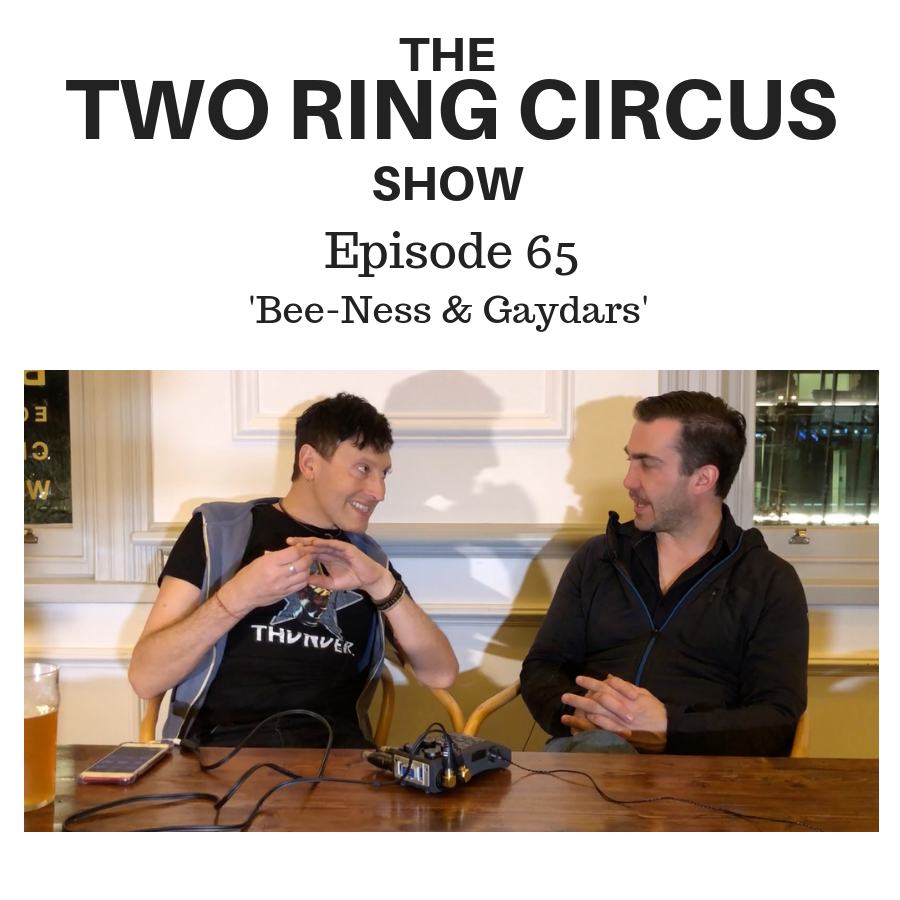 The TRC Show - Episode 065 - 'Bee-ness & Gaydars OR Deep Down Inside Where I Live'
