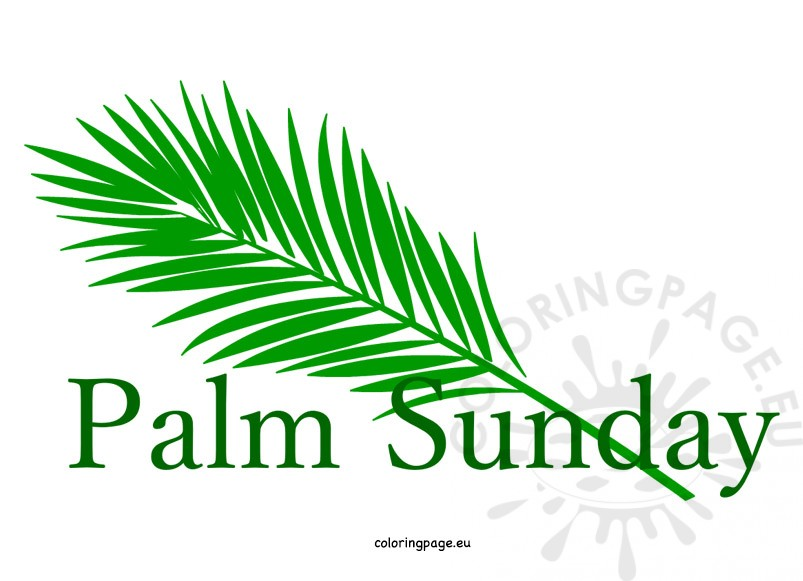 Palm Sunday 2019: The Resolute Christ