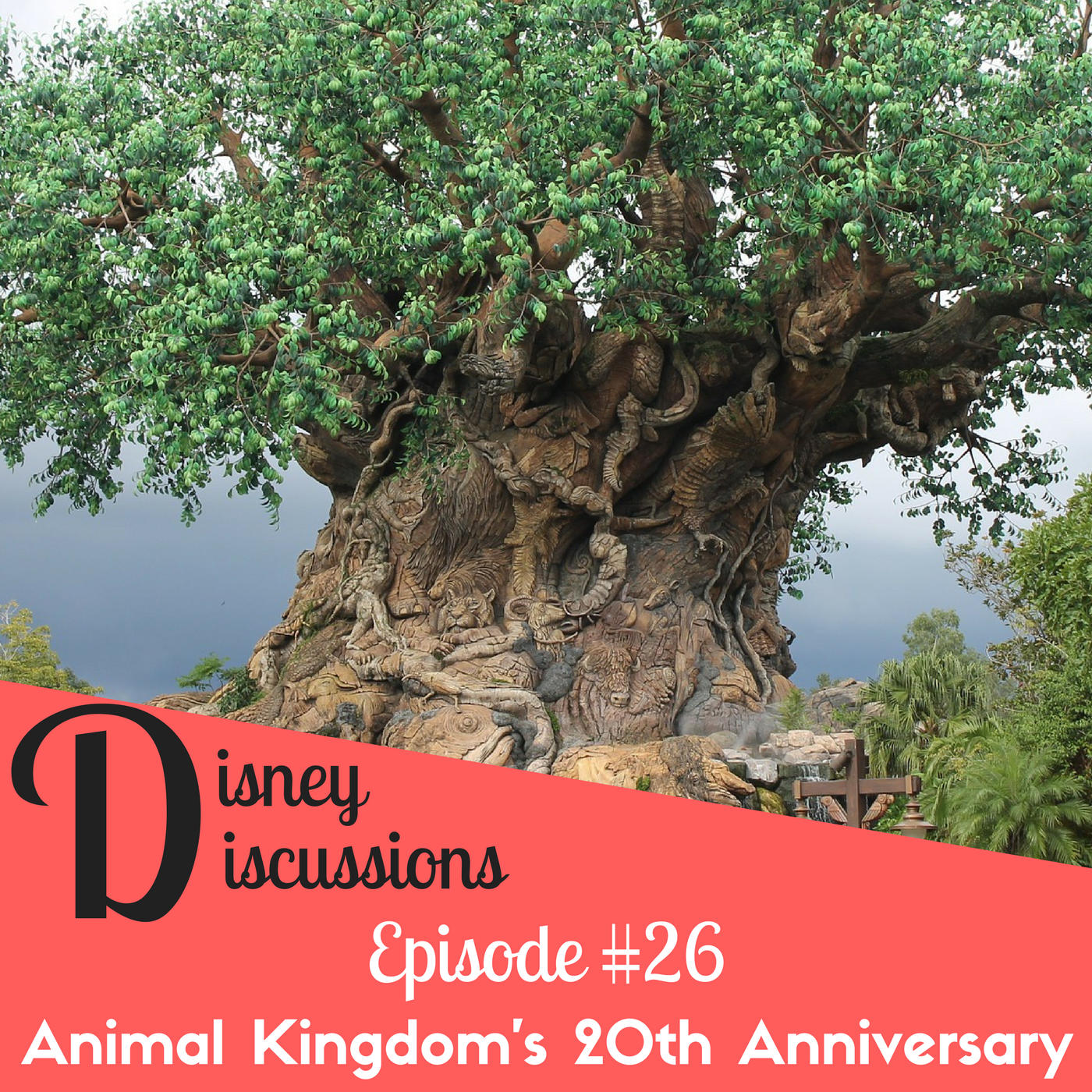Animal Kingdom has a Birthday, Marvel land needs a new name, new Star Wars hotel experience and more! - Disney Discussions