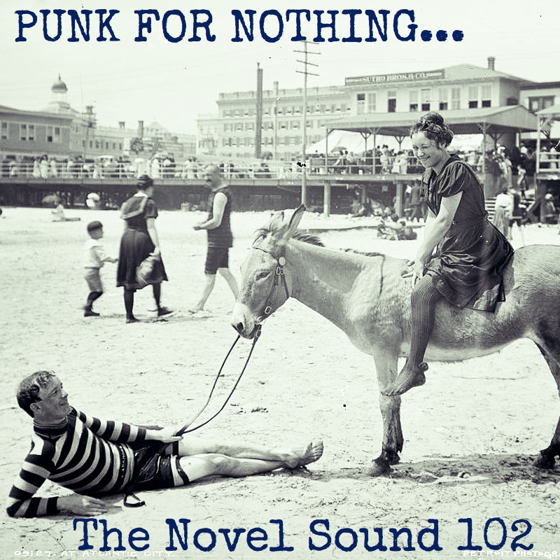 The Novel Sound 102 Punk for Nothing
