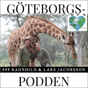 099. The Perfect World by Ragnhild & Lars Jacobsson