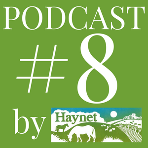 Haynet Podcast #8 What Makes A Blogger An Influencer?
