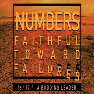NUMBERS - A Budding Leader