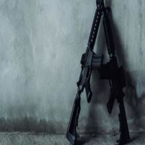 Washington State Infringes on Right to Keep and Bear Arms With New Law