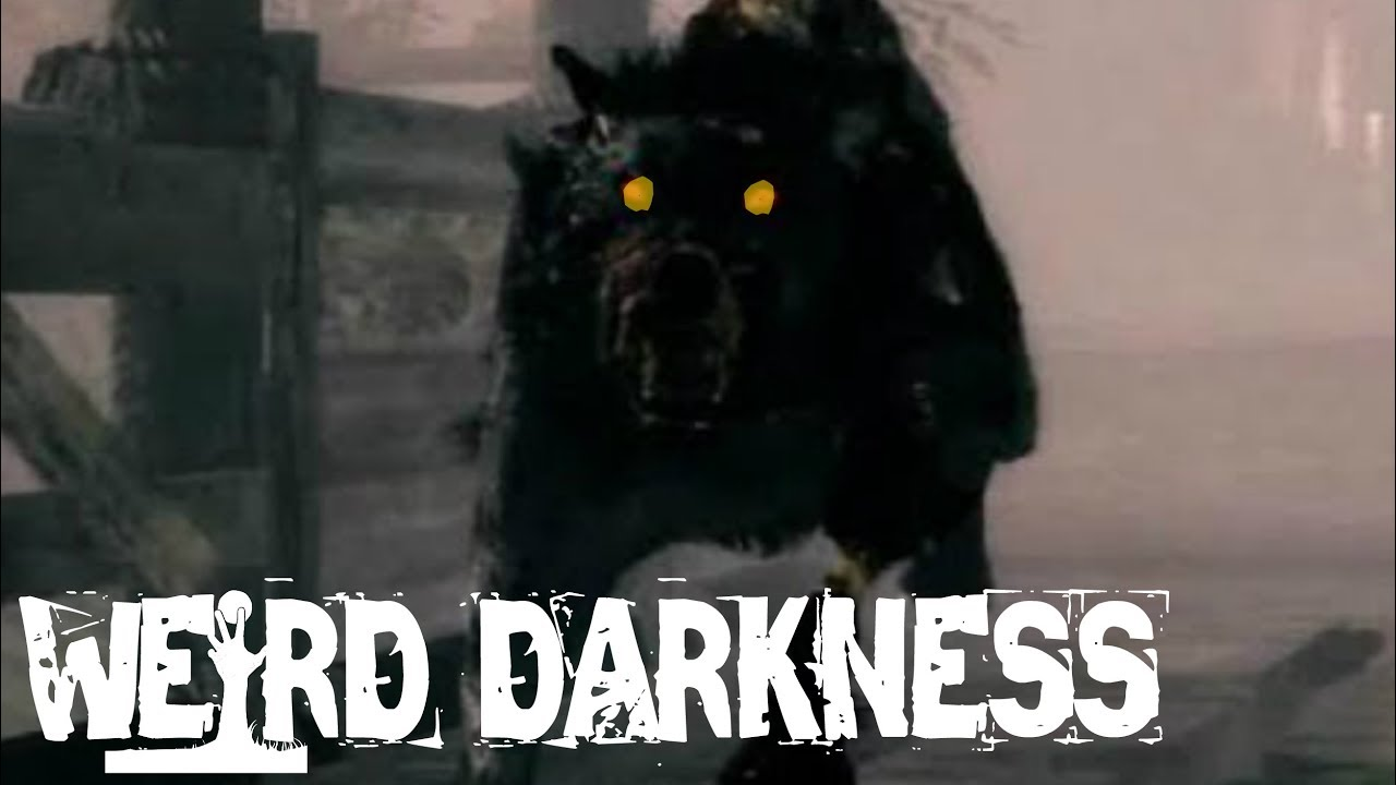 """#WeirdDarkness: """"THE BLACK HOUND OF THE CROSSES"""" and 2 More True Paranormal Horror Stories!"""