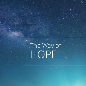 A Thrill of Hope - The Way of Hope Luke 3:1-6