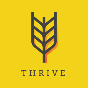 Thrive: The Secret of Unstoppable Joy - Paul Worcester