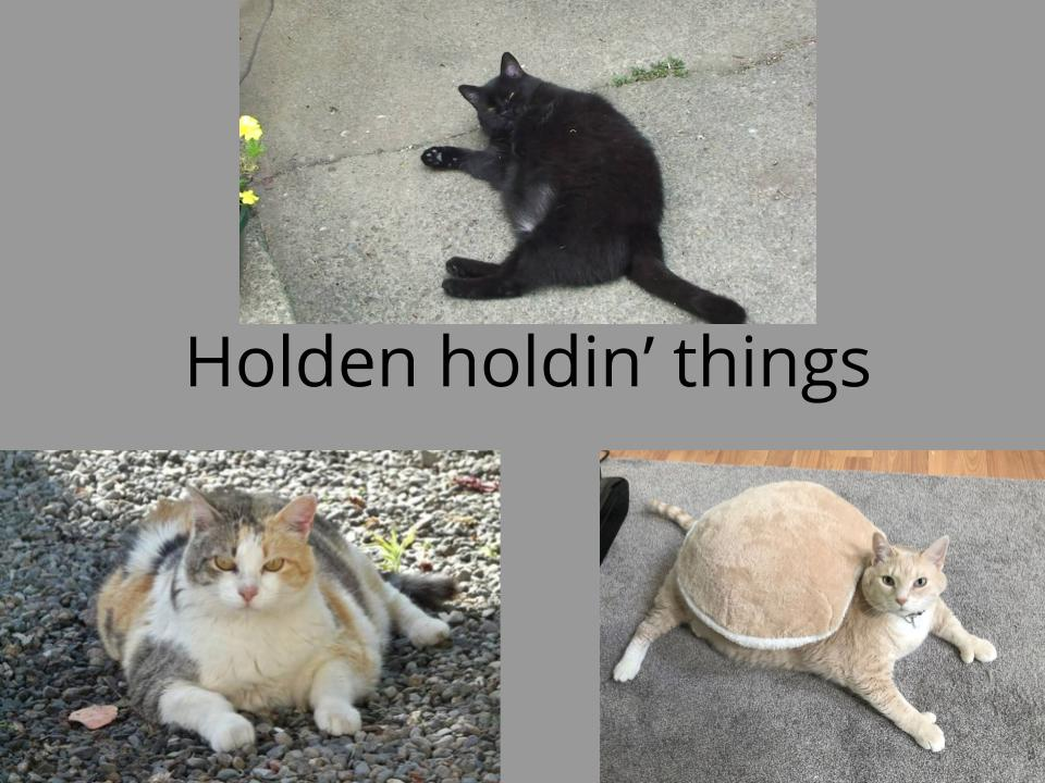 Holden holdin' thing