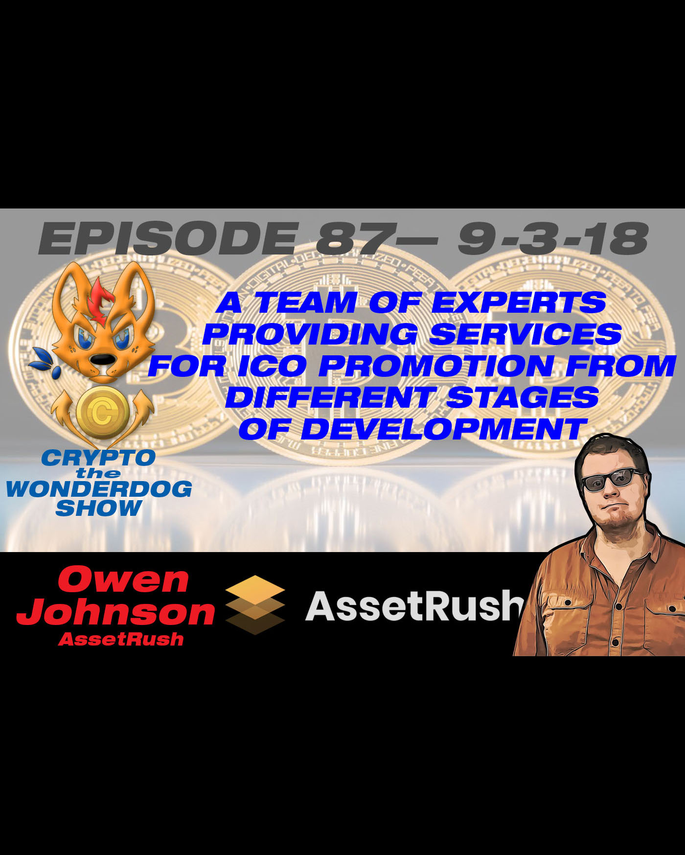 E87 - A team of experts providing services for ICO promotion from different stages of development. - AssetRush - The First Professional Token Promotion