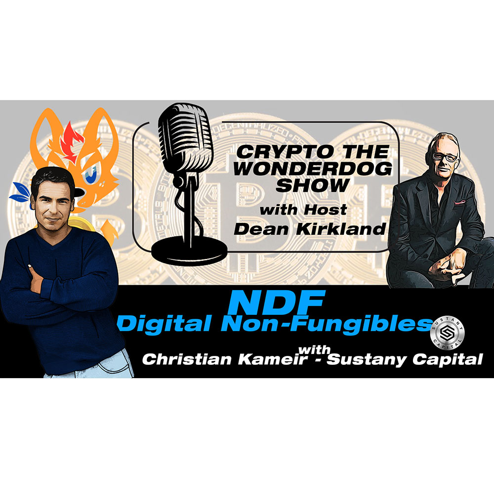 E94 - What are Digital Non-Fungibles 101 - with Sustany Capital